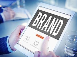 品牌官网设计、电商网站开发